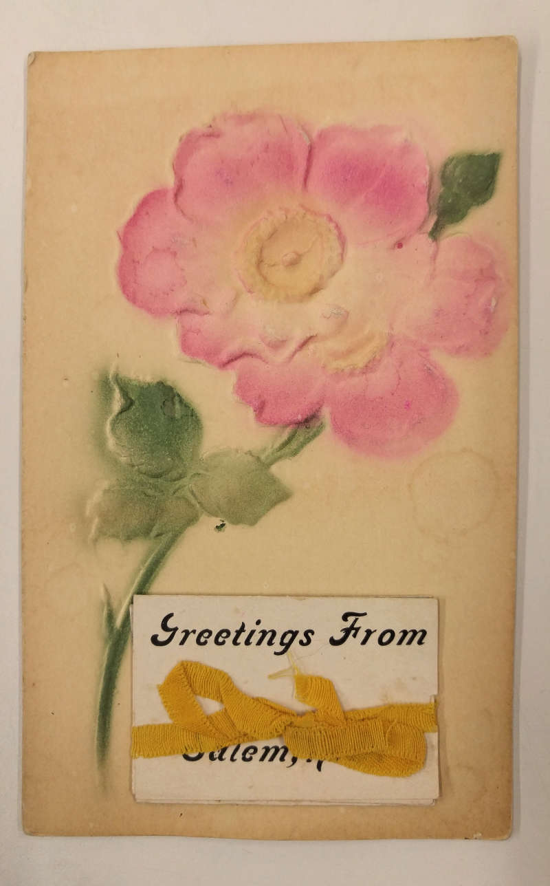 Salem New York Greetings Airbrushed Flower Fold Out Views Postcard