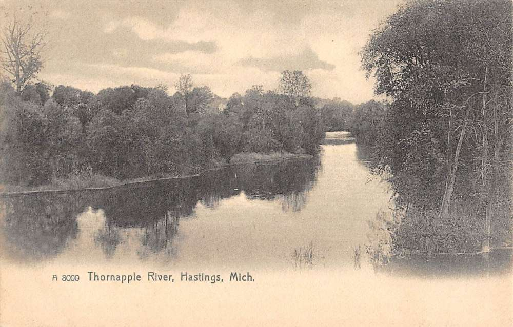 Details about Hastings Michigan Thornapple River Waterfront Antique  Postcard K58448