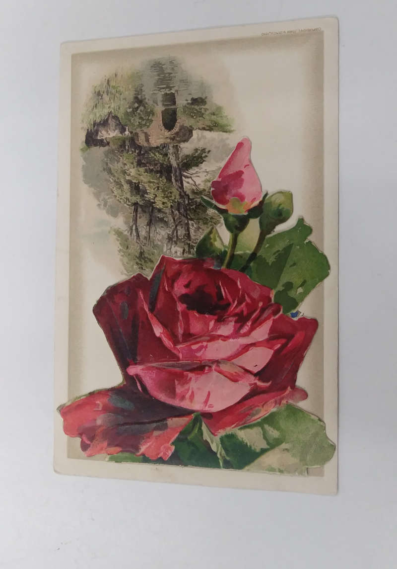 Birthday Greetings Roses Fold Out Booklet Winsch Klein Antique
