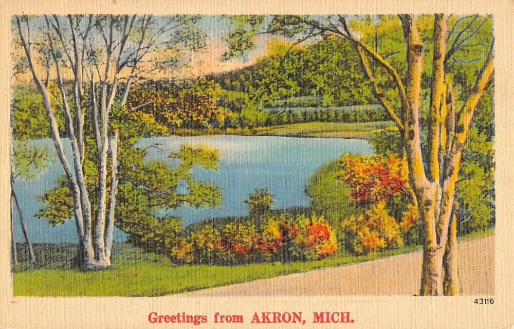 Akron michigan scenic waterfront greeting antique postcard k85475 ebay akron michigan scenic waterfront greeting antique postcard k85475 m4hsunfo